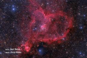 "Celestron 11"" RASA - Rowe-Ackermann Schmidt Astrograph (V2)"